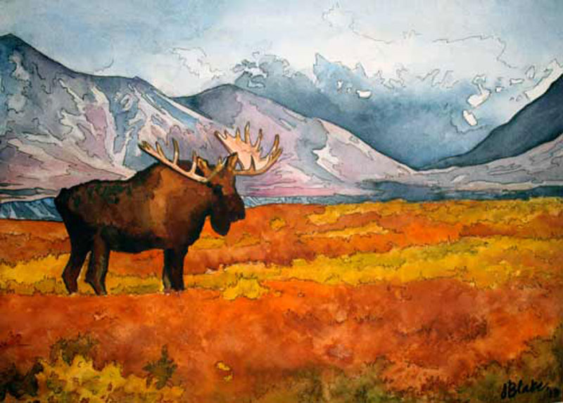 """Alaskan Moose,"" watercolor and ink, 8"" x 10"""