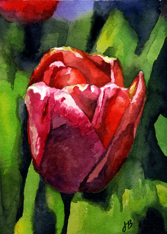 """Red Tulip,"" watercolor, 8"" x 10"""